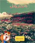 Mudasra Abrar Abi